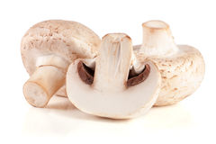 Fresh champignon mushrooms isolated on white background.  Royalty Free Stock Photo