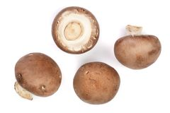 Fresh champignon mushrooms isolated on white background. Top view. Flat lay.  Stock Images