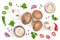 Fresh champignon mushrooms with parsley, peppercorns and red hot chili peppers isolated on white background. Top view. Flat lay royalty free stock photography