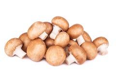 Fresh champignon mushrooms on white. Background Stock Photo
