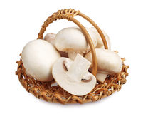 Fresh champignon mushrooms Royalty Free Stock Photography