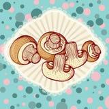 Fresh champignon mushrums Royalty Free Stock Images