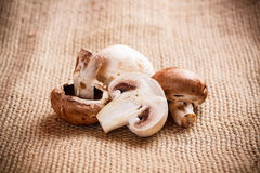 Fresh champignons Stock Image