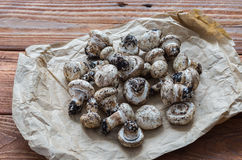 The fresh champignons Stock Photos