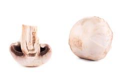 Fresh champignons. Stock Images