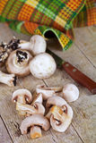 Fresh champignons and old knife Stock Image