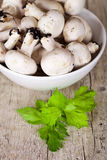 Fresh champignons with parsley in a bowl Stock Photo