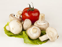 Fresh champignons and a tomato. On lettuce  on white background Royalty Free Stock Photo