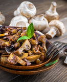 Fresh champignons Stock Images