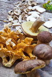 Fresh Chanterelle and Boletus Edilus mushrooms Stock Photo