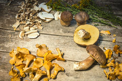 Fresh Chanterelle and Boletus Edilus mushrooms on a wooden table Royalty Free Stock Photography