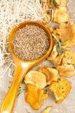 Fresh chanterelle mushroom with cardamon on textured vintage background Royalty Free Stock Photo