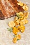 Fresh chanterelle mushroom  on textured vintage background Royalty Free Stock Photography