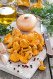Fresh chanterelles and ingredients for cooking on wooden board Royalty Free Stock Photography