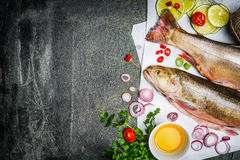 Fresh char fish with ingredients for tasty cooking on rustic background, top view,place for text. Royalty Free Stock Photos