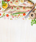 Fresh char with ingredients for fish dishes cooking on white wooden background, top view,border. Stock Image