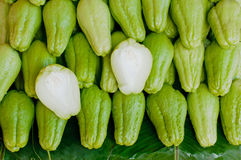 Fresh Chayote vegetables Royalty Free Stock Photo