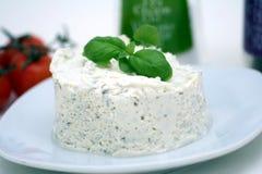 Free Fresh Cheese Stock Photo - 5025710
