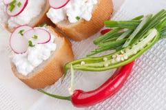 Fresh cheese with agarden radish. Fresh cheese with a garden radish cream Stock Image