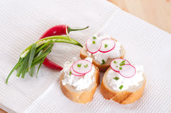 Fresh cheese with agarden radish. Fresh cheese with a garden radish cream Stock Images