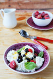Fresh cheese with berries in a bowl. Food closeup Royalty Free Stock Photo