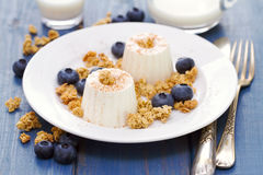 Fresh cheese with granola and blueberries on plate Royalty Free Stock Photo