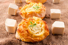Fresh cheese pie Royalty Free Stock Photo