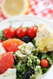 Fresh cheese salad with rocket and berrys Stock Images