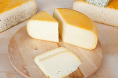 Fresh cheese slice Stock Image
