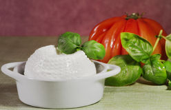 Fresh cheese with tomato baclground Stock Image