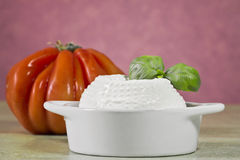 Fresh cheese with tomato baclground Royalty Free Stock Image