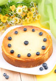 Fresh cheesecake Stock Photography