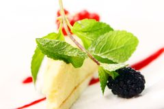 Fresh cheesecake dessert with berries Stock Images