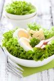 Fresh Chef Salad Royalty Free Stock Photos