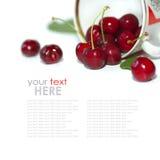 Fresh cherries Stock Image
