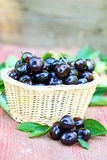Fresh cherries in a basket Stock Photography