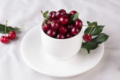 Fresh cherries in bowl on table Stock Photos