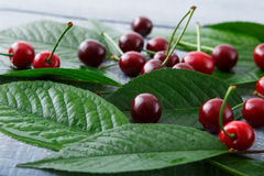 Fresh cherries closeup with green leaves on blue rustic wood. Backround. Healthy food on table Stock Photo
