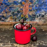 Fresh cherries. A colourful cup with fresh cherries Royalty Free Stock Photo