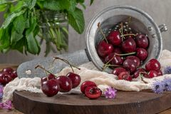 Fresh cherries on dark wooden background. Summer and harvest con Royalty Free Stock Photo