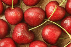 Fresh cherries with drops of water. Ripe cherries with drops of water close-up Royalty Free Stock Photo