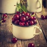 Fresh cherries in enamel mug Stock Images