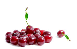 Fresh cherries isolated on white background. One cherry lies separately from the other cherries. Summer berries. Healthy food. Bright photo with copyspace Royalty Free Stock Photos
