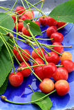 Fresh cherries on a plate Royalty Free Stock Images