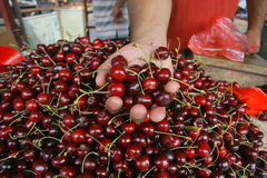 Fresh Cherries on the street market Stock Photography