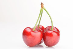 Fresh cherries Stock Photography