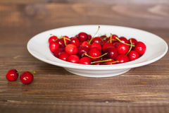 Fresh cherries in the white plate Stock Photos
