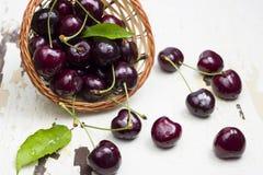 Fresh cherries. Stock Photography