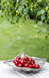 Fresh cherries in wicker basket on wooden table in the garden royalty free stock photos