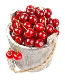 Fresh cherries in a wood bucket. Fresh cherries with water drops in a wood bucket Royalty Free Stock Photo